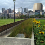 birrarung marr stormwater project
